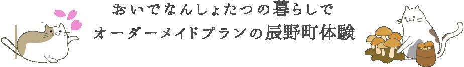 おいでなんしょたつの暮らしでオーダーメイドプラン辰野町体験