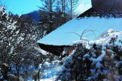 冬景色1506 (2)