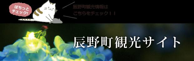 辰野町観光サイト