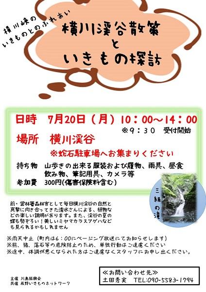 横川渓谷探索といきもの探訪ver.2s